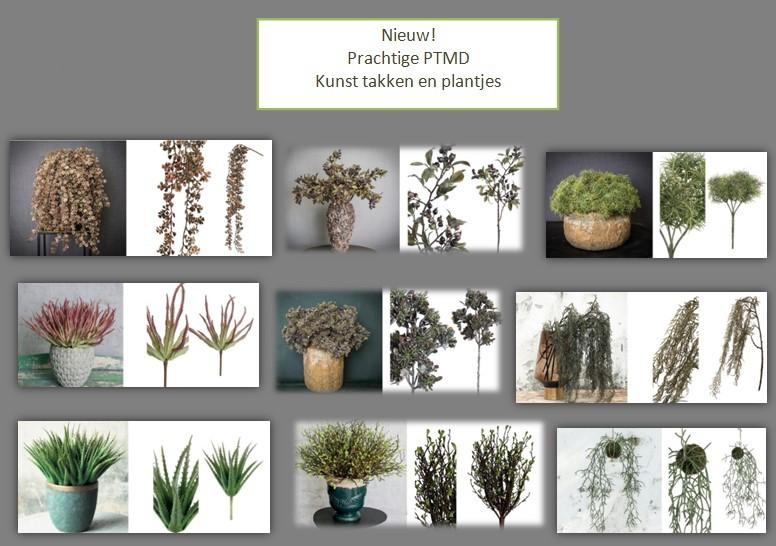 PTMD kunst planten en takken